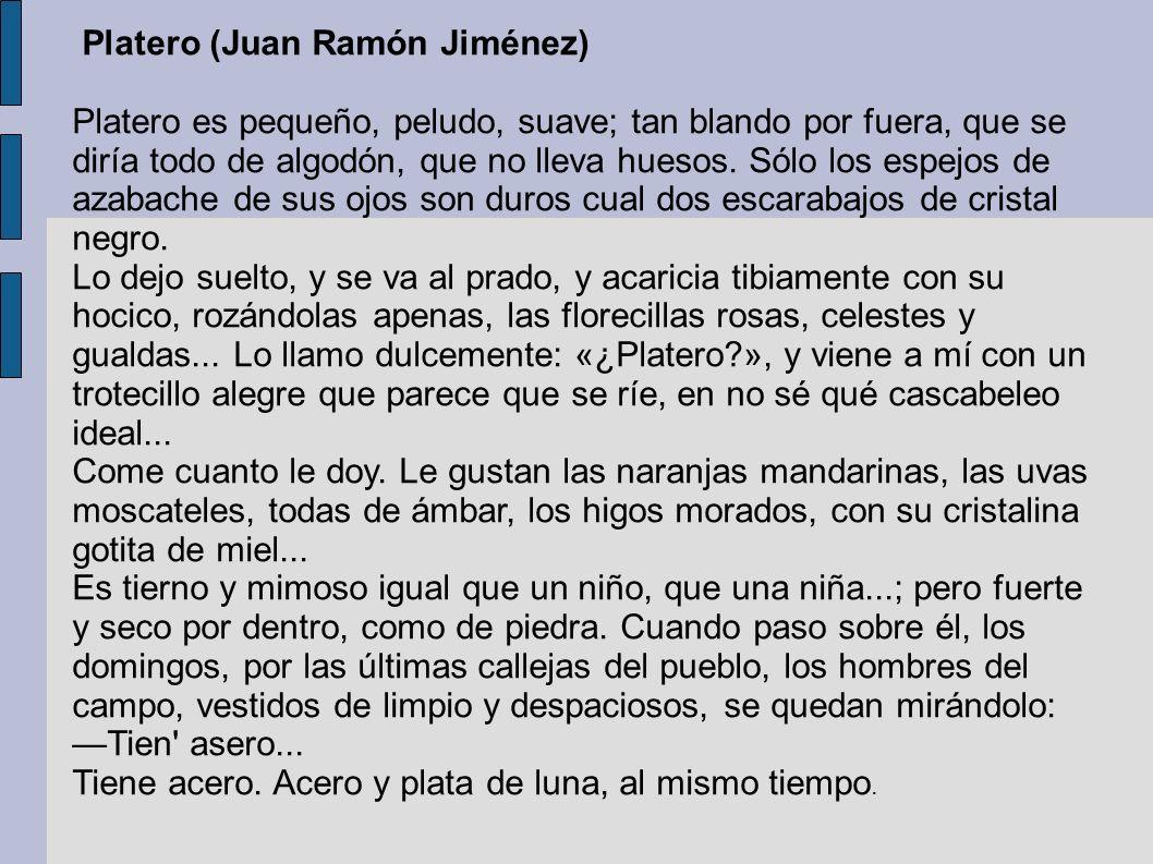 Platero (Juan Ramón Jiménez) Platero es pequeño, peludo, suave; tan blando por fuera, que se diría todo de algodón, que no lleva huesos. Sólo los espe