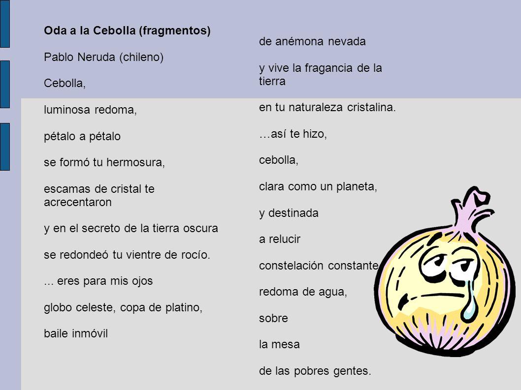 Oda a la Cebolla (fragmentos) Pablo Neruda (chileno) Cebolla, luminosa redoma, pétalo a pétalo se formó tu hermosura, escamas de cristal te acrecentar
