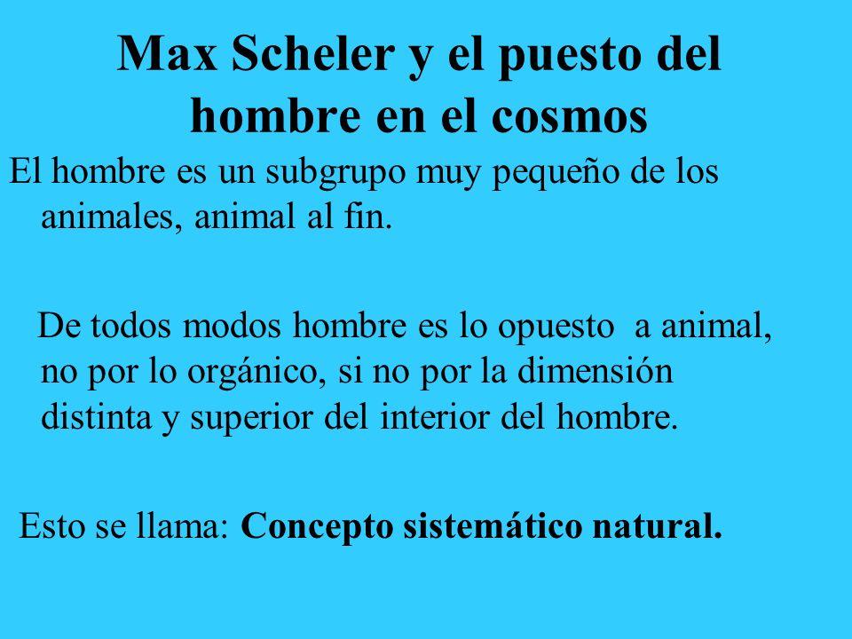 Max Scheler y el puesto del hombre en el cosmos El hombre es un subgrupo muy pequeño de los animales, animal al fin. De todos modos hombre es lo opues