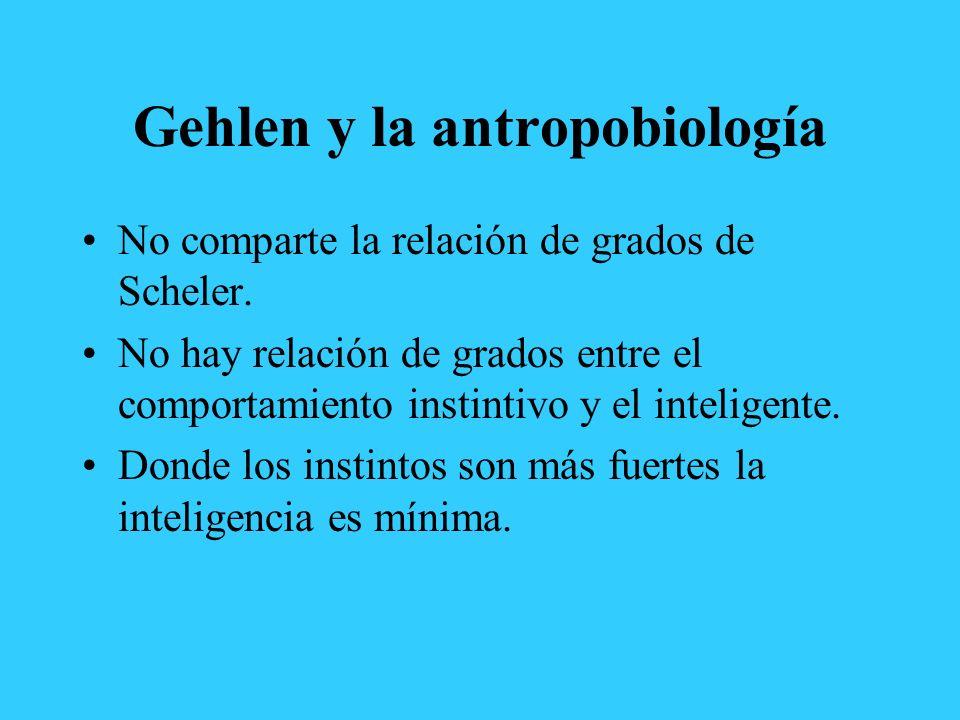Gehlen y la antropobiología No comparte la relación de grados de Scheler. No hay relación de grados entre el comportamiento instintivo y el inteligent