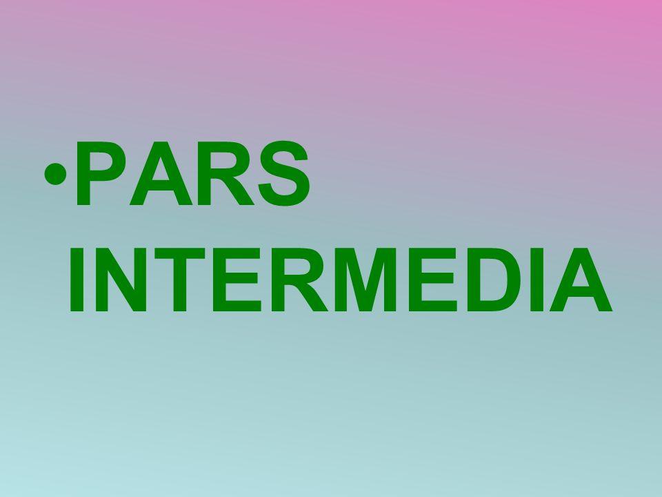 PARS INTERMEDIA