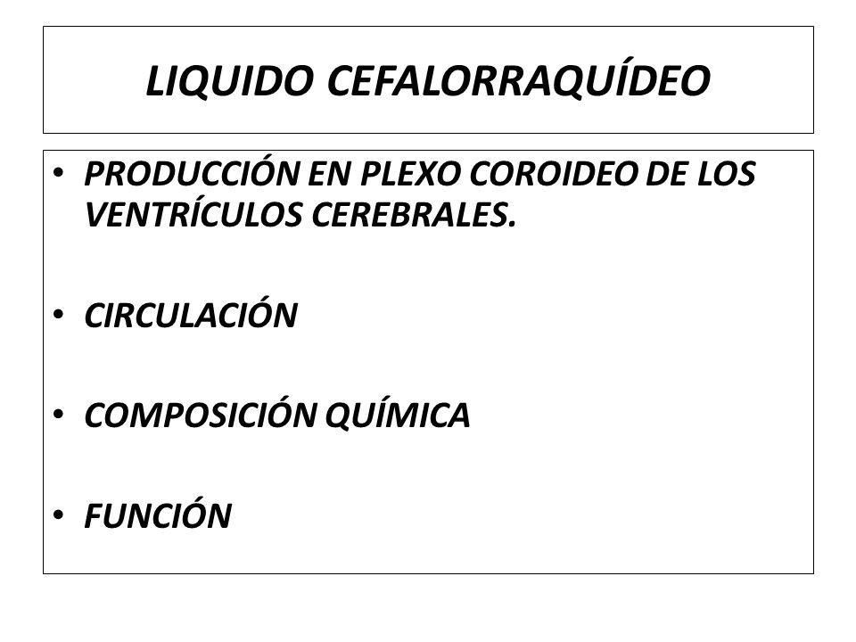LIQUIDO CEFALORRAQUÍDEO PRODUCCIÓN EN PLEXO COROIDEO DE LOS VENTRÍCULOS CEREBRALES. CIRCULACIÓN COMPOSICIÓN QUÍMICA FUNCIÓN