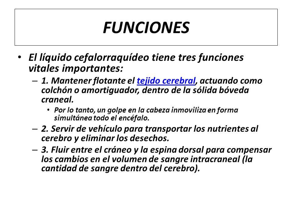 FUNCIONES El líquido cefalorraquídeo tiene tres funciones vitales importantes: – 1. Mantener flotante el tejido cerebral, actuando como colchón o amor
