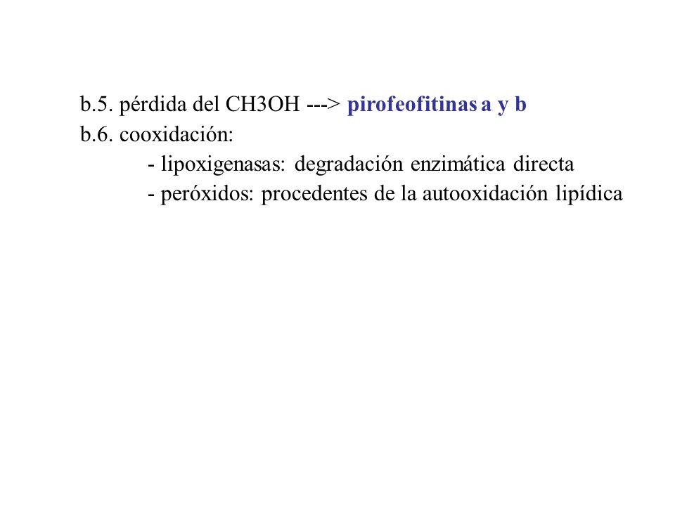 b.5. pérdida del CH3OH ---> pirofeofitinas a y b b.6. cooxidación: - lipoxigenasas: degradación enzimática directa - peróxidos: procedentes de la auto