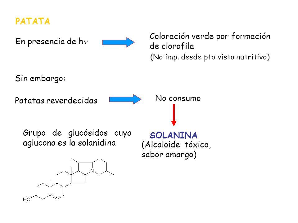 PATATA En presencia de h Coloración verde por formación de clorofila (No imp. desde pto vista nutritivo) Sin embargo: Patatas reverdecidas No consumo