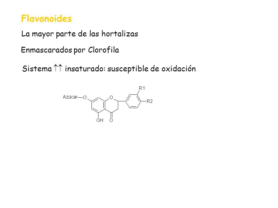 Flavonoides La mayor parte de las hortalizas Enmascarados por Clorofila Sistema insaturado: susceptible de oxidación