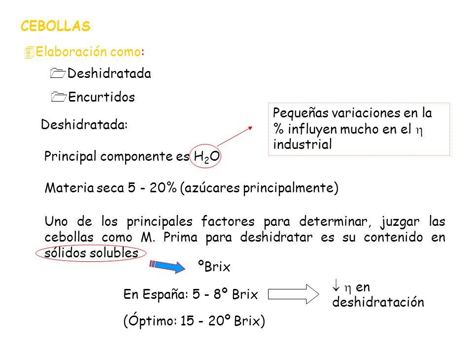 CEBOLLAS 4Elaboración como: 1Encurtidos 1Deshidratada Deshidratada: Principal componente es H 2 O Pequeñas variaciones en la % influyen mucho en el in