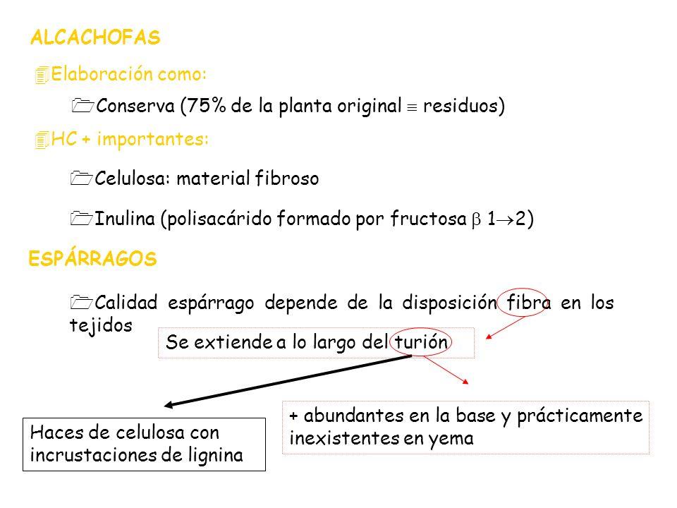 ALCACHOFAS 4Elaboración como: 1Conserva (75% de la planta original residuos) 4HC + importantes: 1Celulosa: material fibroso 1Inulina (polisacárido for