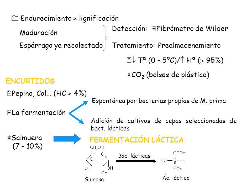1Endurecimiento lignificación Maduración Espárrago ya recolectado Detección:3Fibrómetro de Wilder Tratamiento:Prealmacenamiento 3 Tª (0 - 5ºC)/ Hª ( 9