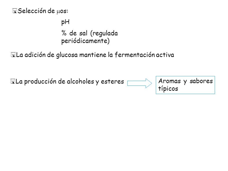 <Selección de os: pH % de sal (regulada periódicamente) <La adición de glucosa mantiene la fermentación activa <La producción de alcoholes y esteres A