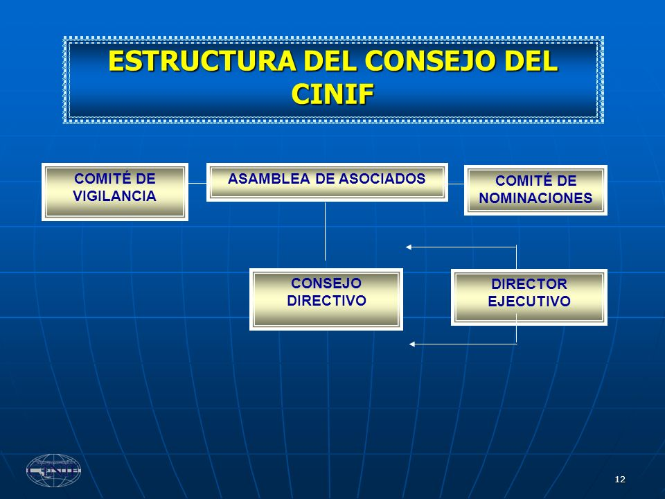 12 ESTRUCTURA DEL CONSEJO DEL CINIF CONSEJO DIRECTIVO ASAMBLEA DE ASOCIADOSCOMITÉ DE VIGILANCIA COMITÉ DE NOMINACIONES DIRECTOR EJECUTIVO