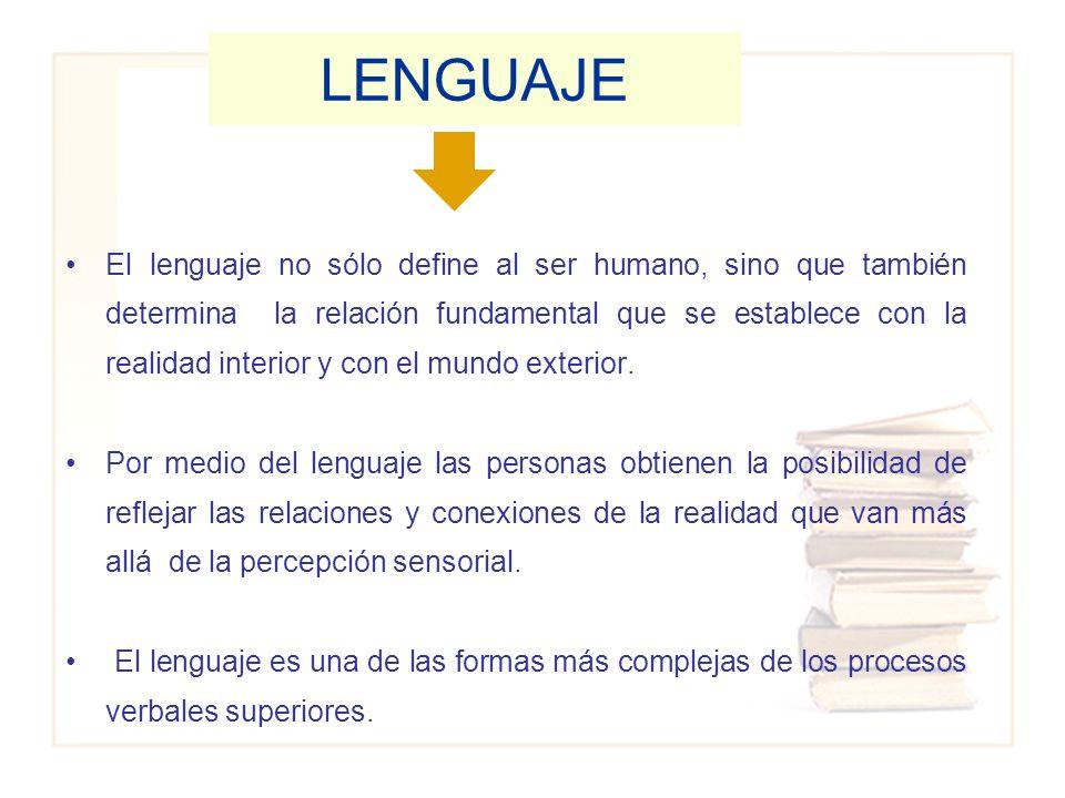 El lenguaje no sólo define al ser humano, sino que también determina la relación fundamental que se establece con la realidad interior y con el mundo