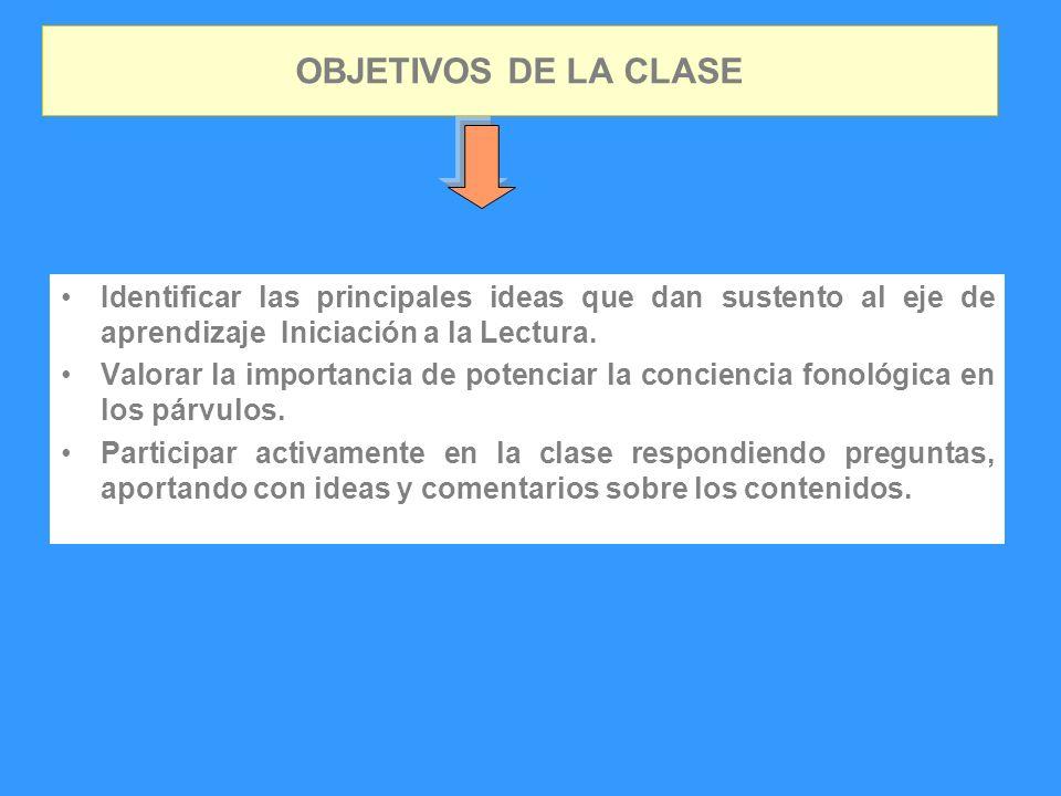 OBJETIVOS DE LA CLASE Identificar las principales ideas que dan sustento al eje de aprendizaje Iniciación a la Lectura. Valorar la importancia de pote