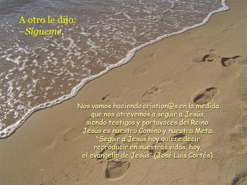 Mientras iban de camino, uno le dijo: –Te seguiré adondequiera que vayas. Jesús le contestó: –Las zorras tienen madrigueras y los pájaros del cielo ni