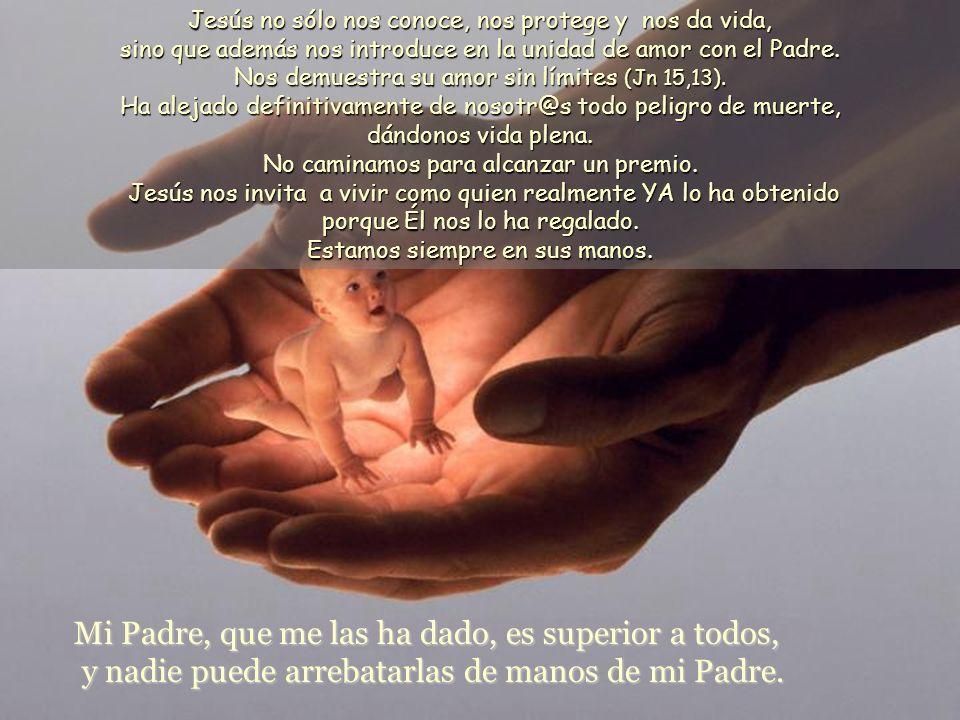 Mi Padre, que me las ha dado, es superior a todos, y nadie puede arrebatarlas de manos de mi Padre.