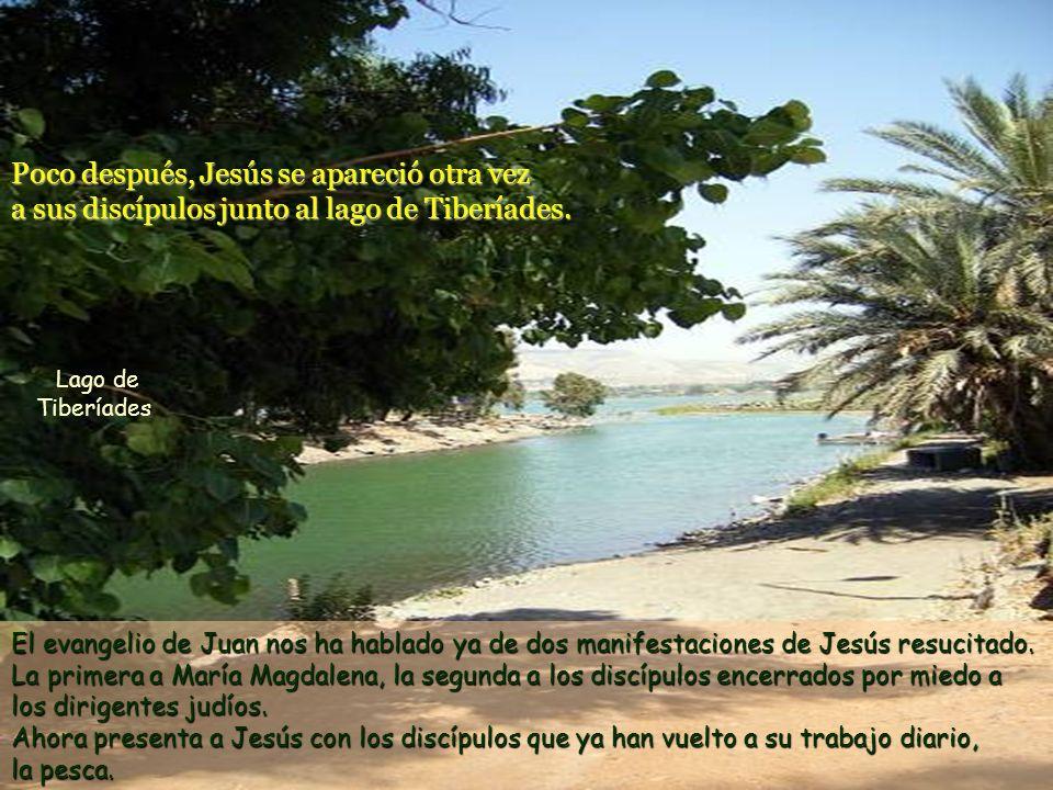 El evangelio de Juan nos ha hablado ya de dos manifestaciones de Jesús resucitado.