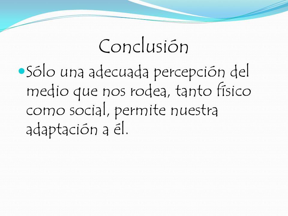 Conclusión Sólo una adecuada percepción del medio que nos rodea, tanto físico como social, permite nuestra adaptación a él.