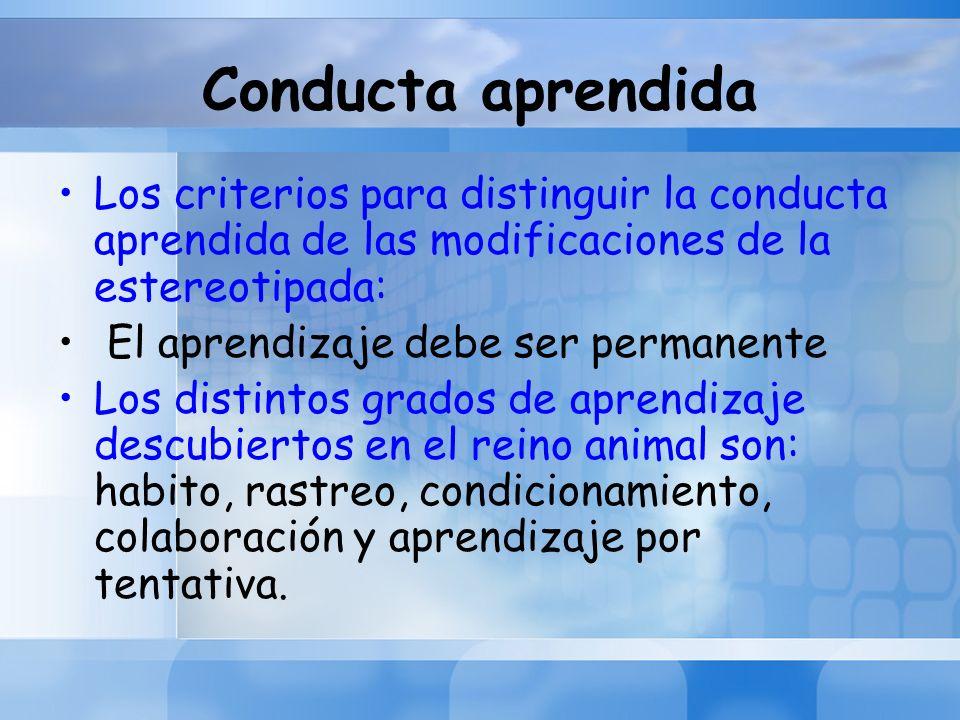 Conducta aprendida Los criterios para distinguir la conducta aprendida de las modificaciones de la estereotipada: El aprendizaje debe ser permanente L