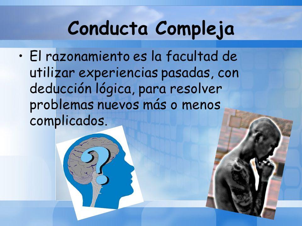 Conducta Compleja El razonamiento es la facultad de utilizar experiencias pasadas, con deducción lógica, para resolver problemas nuevos más o menos co