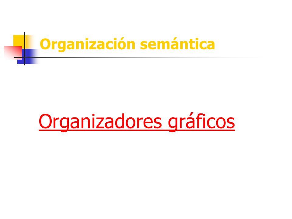 Organización semántica Organizadores gráficos