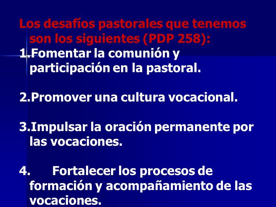Los desafíos pastorales que tenemos son los siguientes (PDP 258): 1.Fomentar la comunión y participación en la pastoral. 2.Promover una cultura vocaci