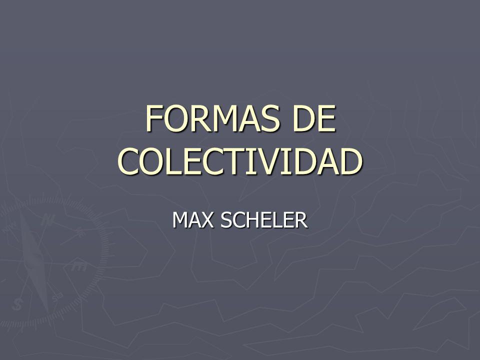FORMAS DE COLECTIVIDAD MAX SCHELER
