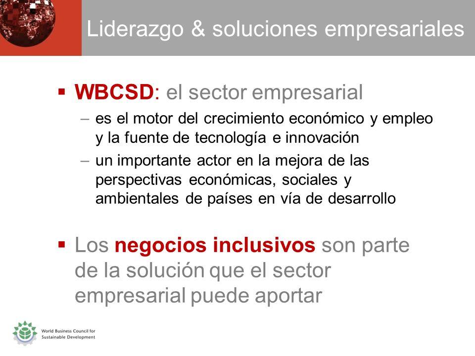 Liderazgo & soluciones empresariales WBCSD: el sector empresarial –es el motor del crecimiento económico y empleo y la fuente de tecnología e innovación –un importante actor en la mejora de las perspectivas económicas, sociales y ambientales de países en vía de desarrollo Los negocios inclusivos son parte de la solución que el sector empresarial puede aportar
