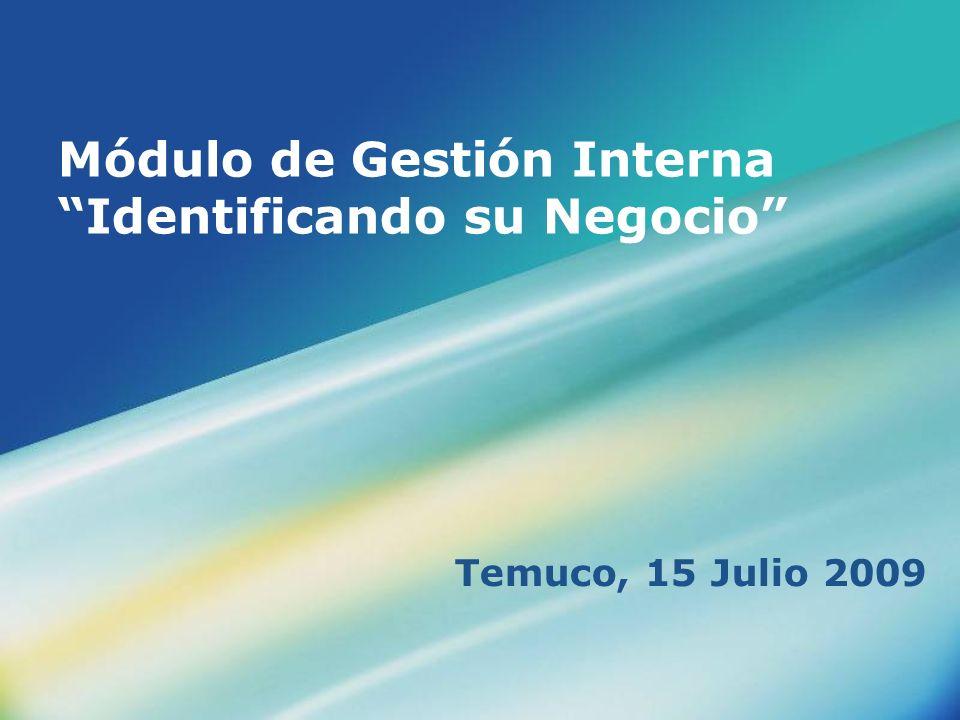 Módulo de Gestión Interna Identificando su Negocio Temuco, 15 Julio 2009