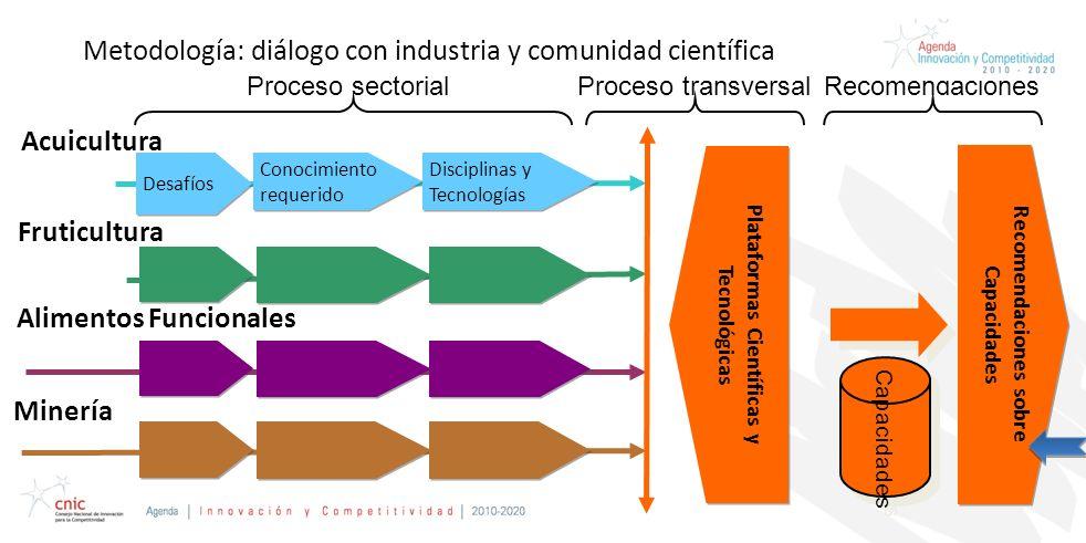 Metodología: diálogo con industria y comunidad científica Acuicultura Fruticultura Alimentos Funcionales Minería Desafíos Conocimiento requerido Disciplinas y Tecnologías Proceso sectorial Plataformas Científicas y Tecnológicas Proceso transversal Recomendaciones sobre Capacidades Capacidades Recomendaciones