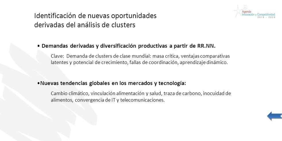 Identificación de nuevas oportunidades derivadas del análisis de clusters Demandas derivadas y diversificación productivas a partir de RR.NN. Clave: D