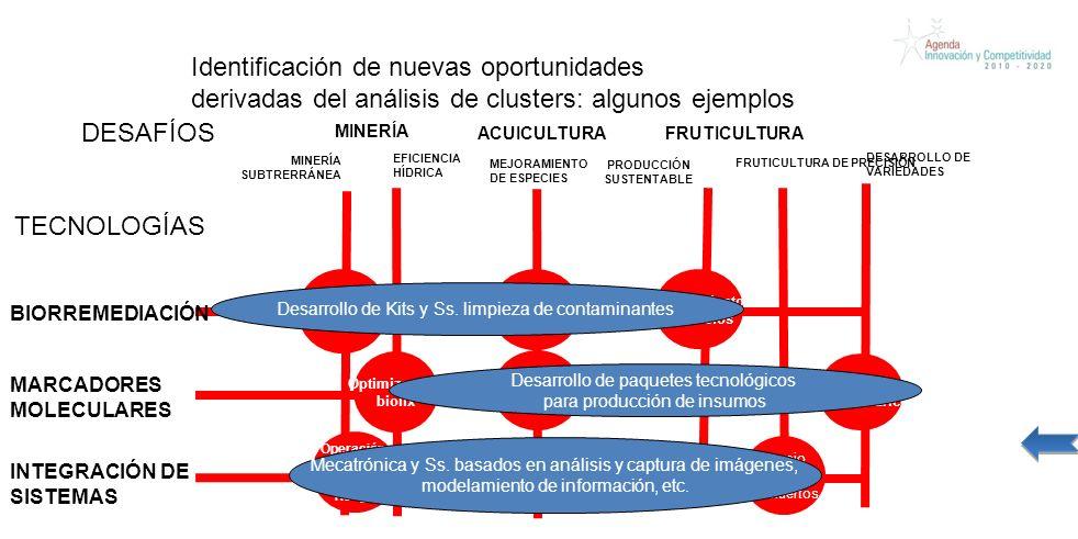 Identificación de nuevas oportunidades derivadas del análisis de clusters: algunos ejemplos BIORREMEDIACIÓN FRUTICULTURA DE PRECISIÓN MINERÍA FRUTICULTURA MINERÍA SUBTRERRÁNEA Recuperación de suelos Operación de maq.