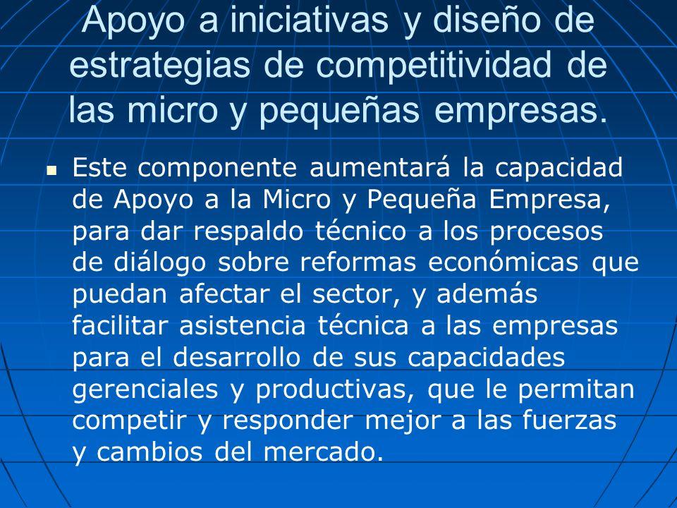 Apoyo a iniciativas y diseño de estrategias de competitividad de las micro y pequeñas empresas.