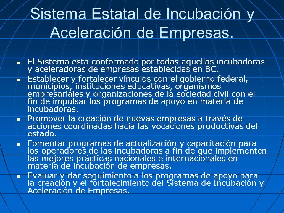 Sistema Estatal de Incubación y Aceleración de Empresas.