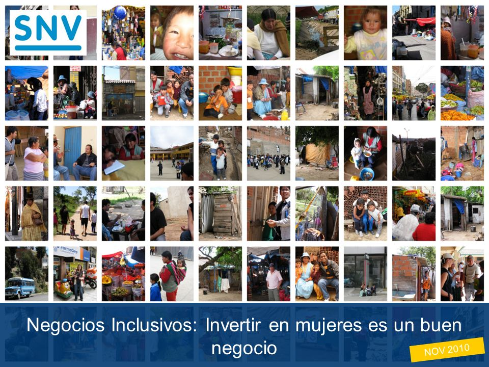 Copyright © 2008 by SNV Latin America - The Netherlands Development Organisation.