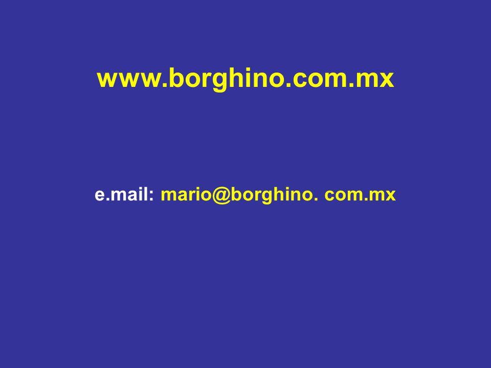 www.borghino.com.mx e.mail: mario@borghino. com.mx