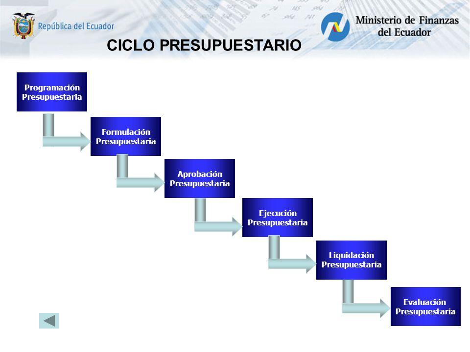 Programación Presupuestaria Formulación Presupuestaria Aprobación Presupuestaria Ejecución Presupuestaria Evaluación Presupuestaria Liquidación Presupuestaria CICLO PRESUPUESTARIO