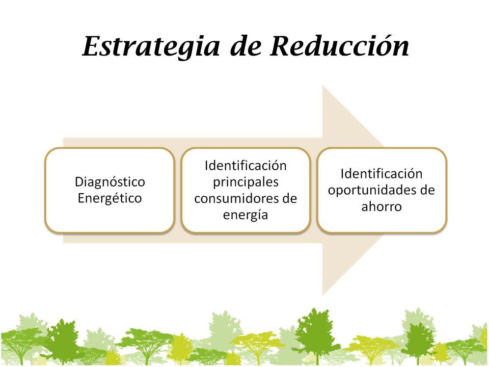Estrategia de Reducción