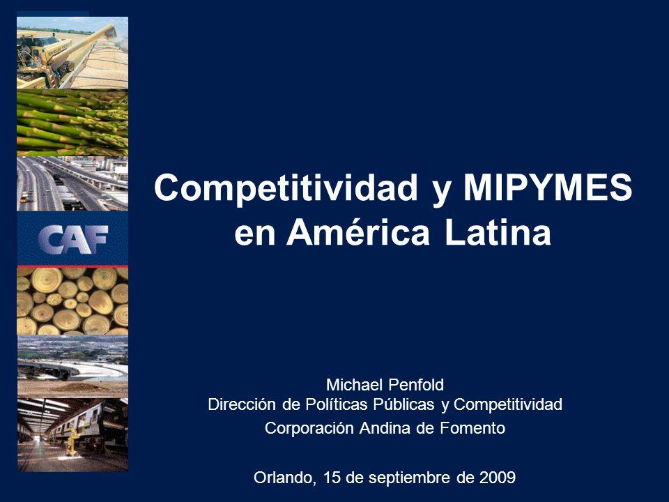 Michael Penfold Dirección de Políticas Públicas y Competitividad Corporación Andina de Fomento Orlando, 15 de septiembre de 2009 Competitividad y MIPYMES en América Latina