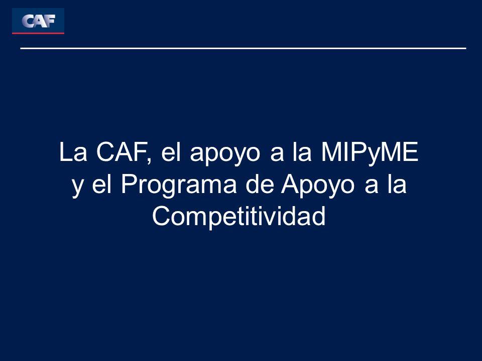 La CAF, el apoyo a la MIPyME y el Programa de Apoyo a la Competitividad