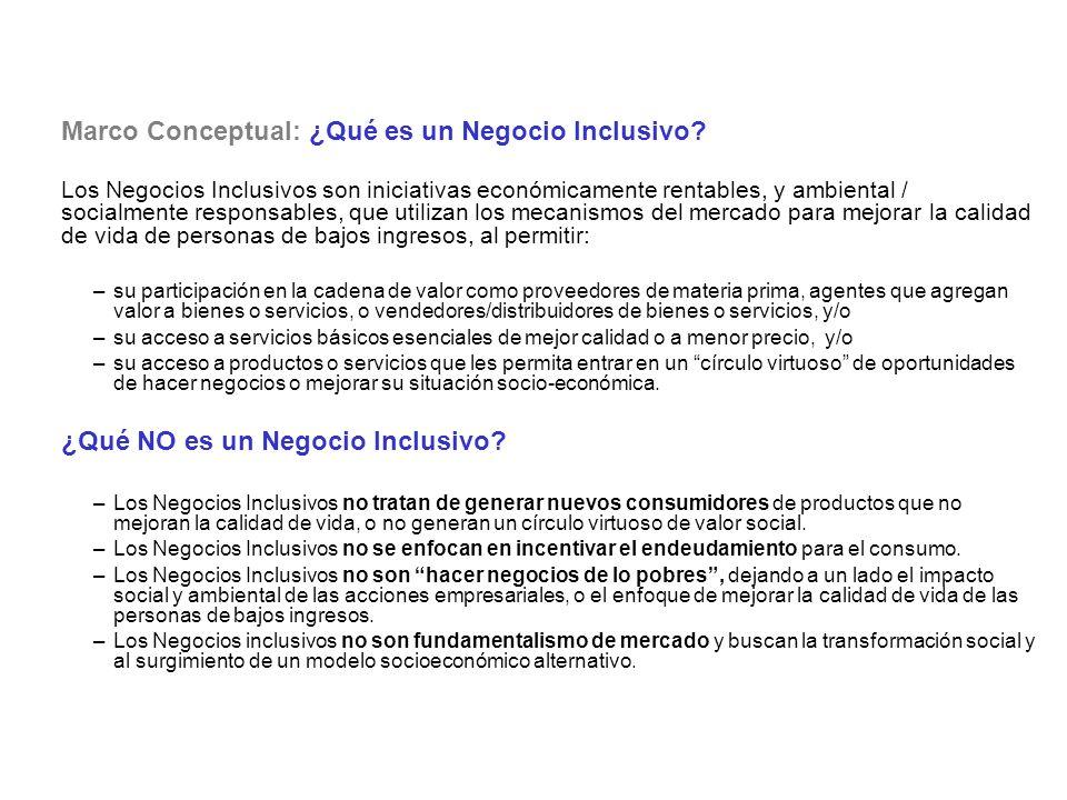 Marco Conceptual: ¿Qué es un Negocio Inclusivo? Los Negocios Inclusivos son iniciativas económicamente rentables, y ambiental / socialmente responsabl
