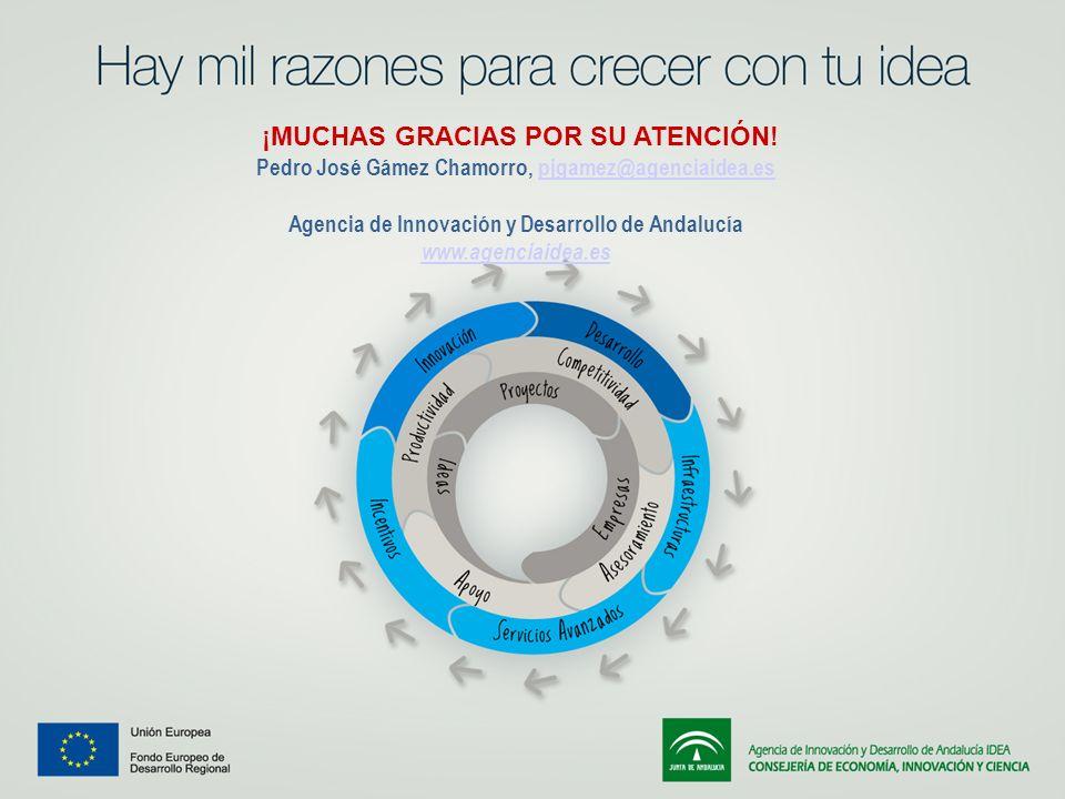 ¡MUCHAS GRACIAS POR SU ATENCIÓN! Pedro José Gámez Chamorro, pjgamez@agenciaidea.espjgamez@agenciaidea.es Agencia de Innovación y Desarrollo de Andaluc