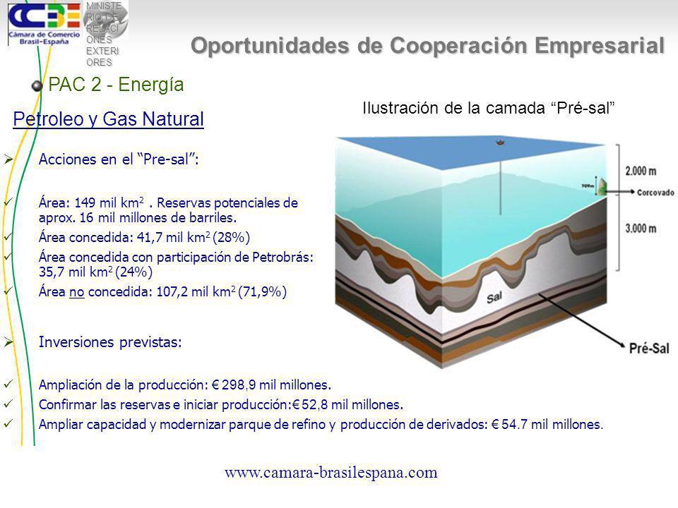 MINISTE RIO DE RELACI ONES EXTERI ORES Oportunidades de Cooperación Empresarial Inversiones previstas: Ampliación de la producción: 298,9 mil millones.