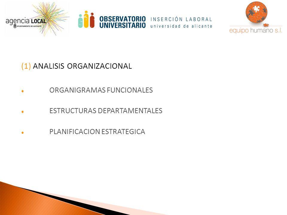 (1) ANALISIS ORGANIZACIONAL ORGANIGRAMAS FUNCIONALES ESTRUCTURAS DEPARTAMENTALES PLANIFICACION ESTRATEGICA