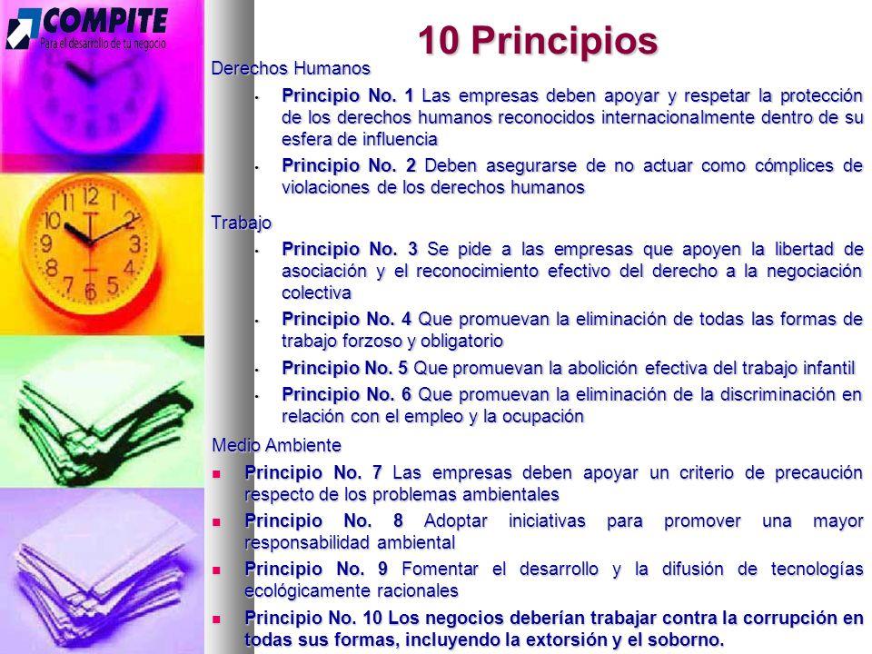 10 Principios Derechos Humanos Principio No.