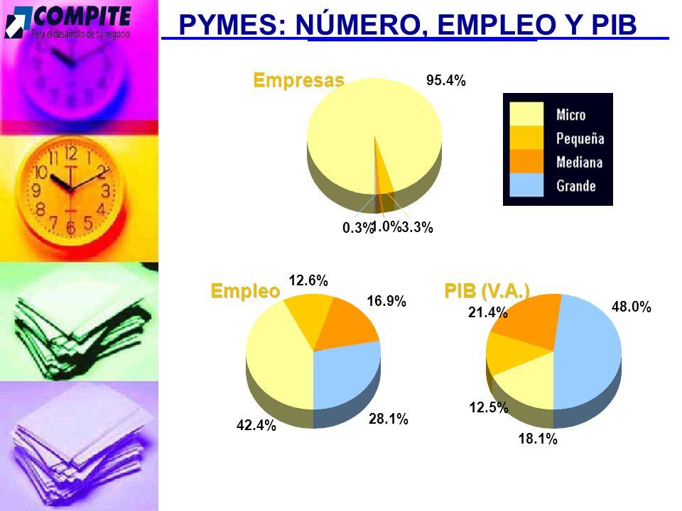 Fuente: INEGI, Censos Económicos 1999 PYMES: NÚMERO, EMPLEO Y PIB Empleo 12.6% 16.9% 28.1% 42.4% Empresas 1.0% 0.3% 3.3% 95.4% PIB (V.A.) 48.0% 12.5% 21.4% 18.1%