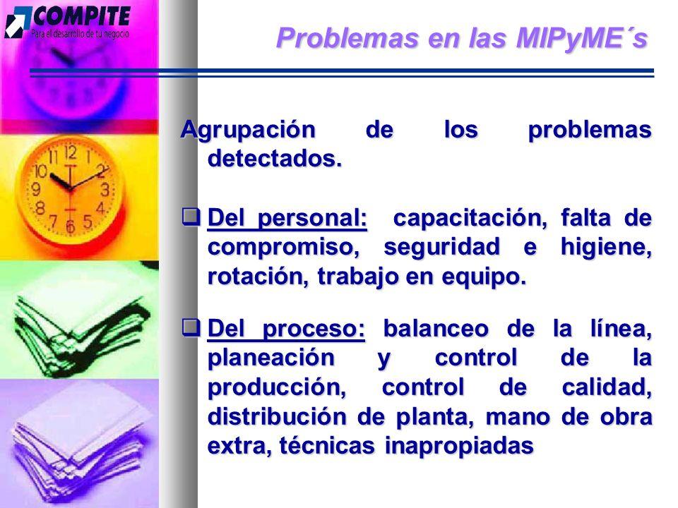 Problemas en las MIPyME´s Agrupación de los problemas detectados.