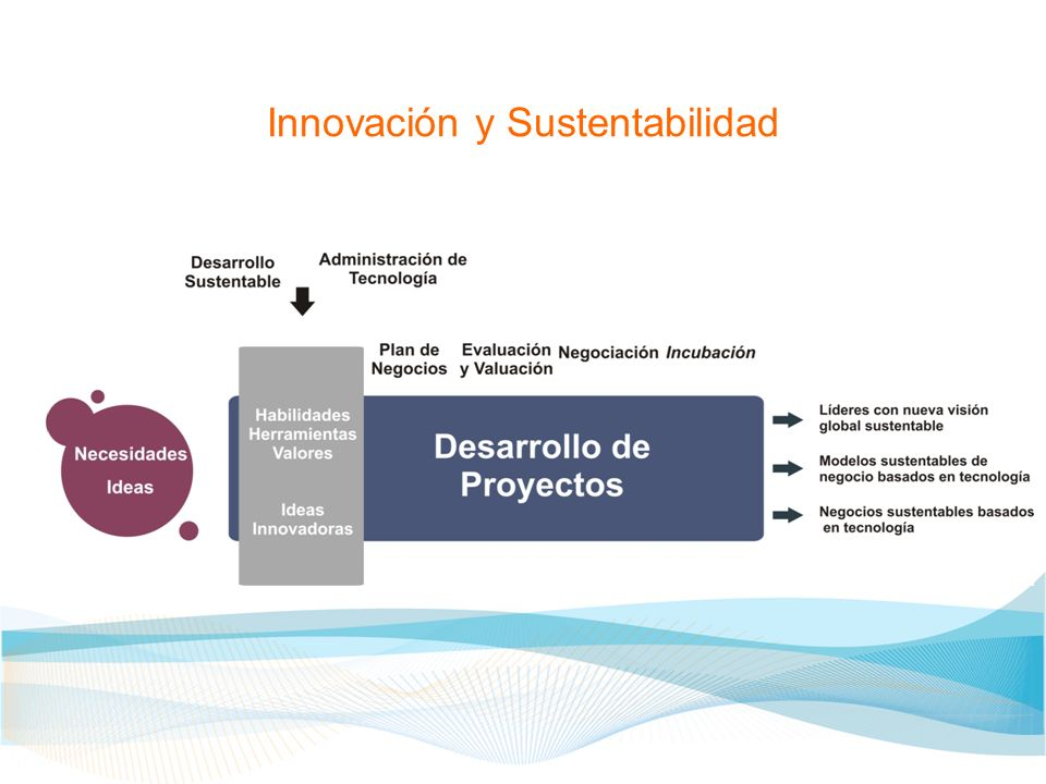 Innovación y Sustentabilidad