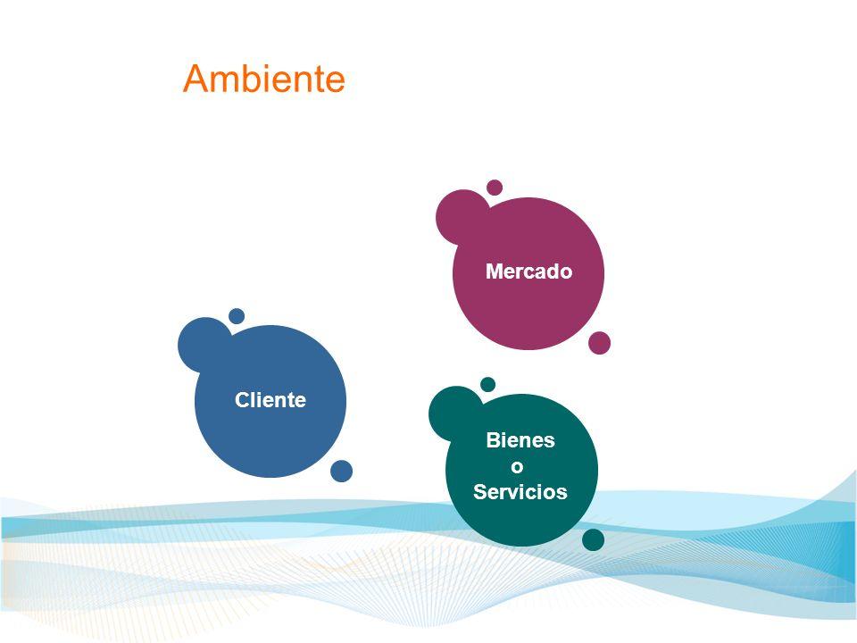 Ambiente Cliente Mercado Bienes o Servicios