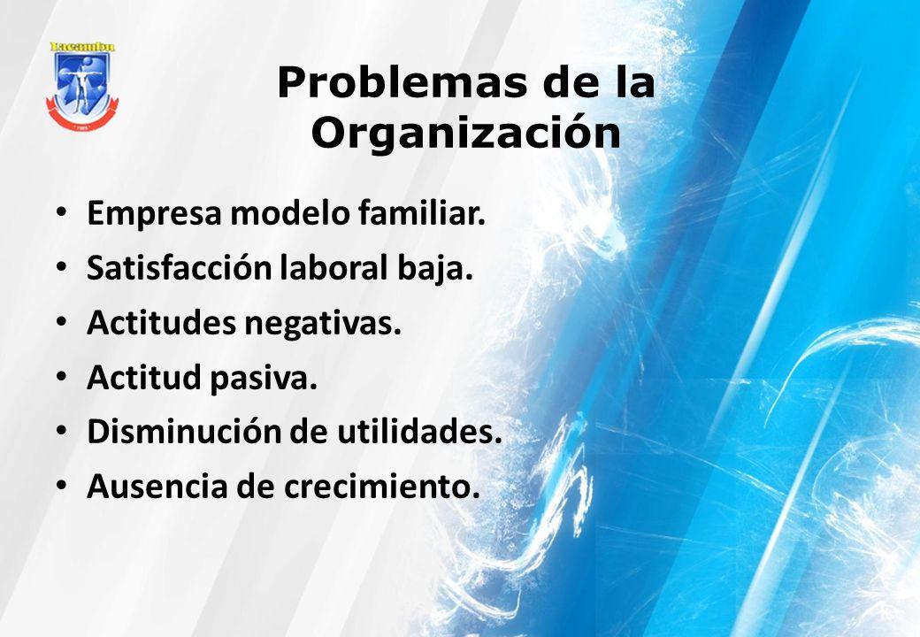 Problemas de la Organización Empresa modelo familiar. Satisfacción laboral baja. Actitudes negativas. Actitud pasiva. Disminución de utilidades. Ausen