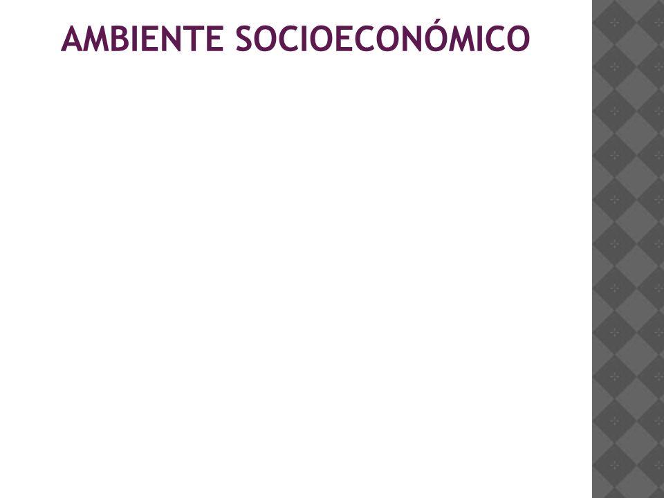 AMBIENTE SOCIOECONÓMICO